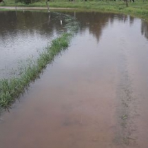 Plūdi Latgalē, 08.2017