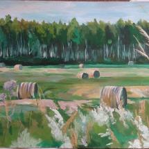 Latvijas lauku ainava
